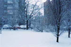 Febrer-65.jpg